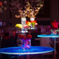Posh and Luxe event furniture rental